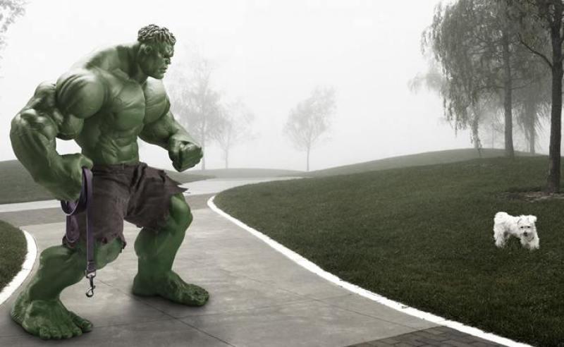 hulk-dog