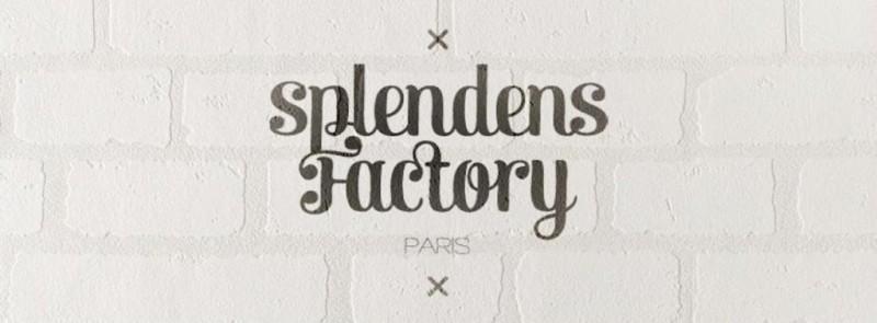 splendens-1024x378 toyota